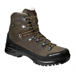 Mammut Trovat Guide High GTX® Men